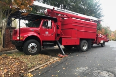tree service Greensboro,