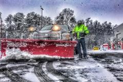 tree service Greensboro,
